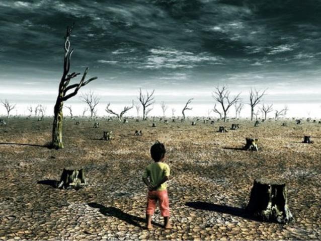 guerra y recursos naturales 2