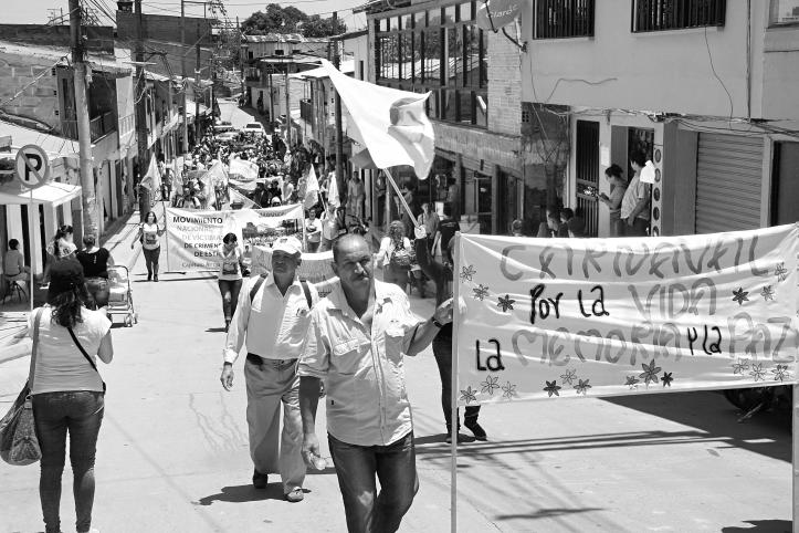 carnaval-por-la-vida2a